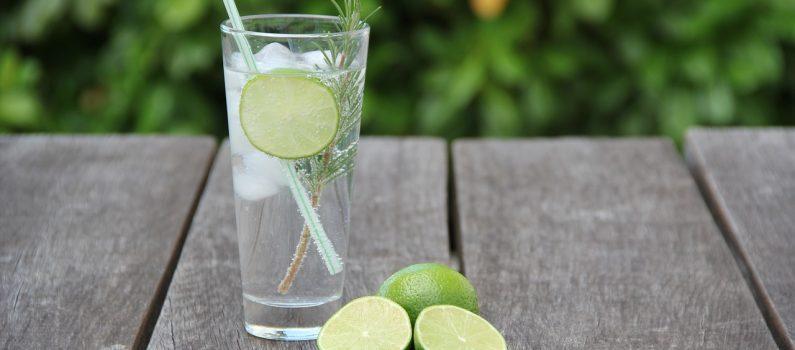 Wieso Gin-Tonic das beste alkoholische Getränk für Allergiker ist