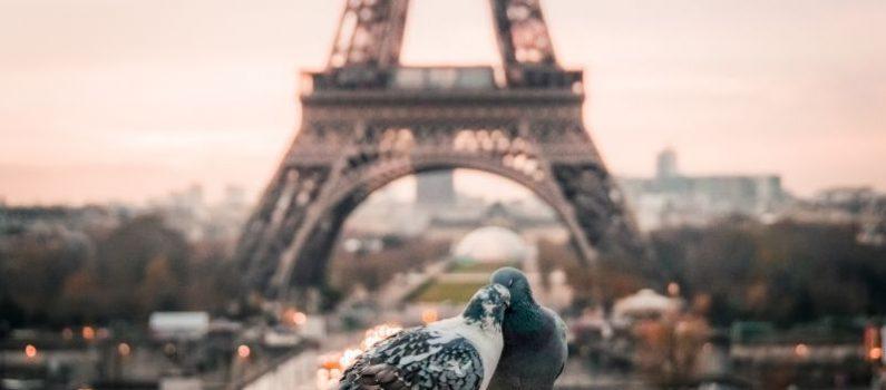 Sind Franzosen wirklich charmanter?